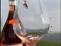 The Beauty of Rosé Wine